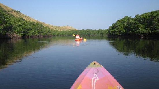 Bungalows Solecito : kayaking in barra de potosi
