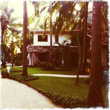 Bungalows Solecito : bungalow