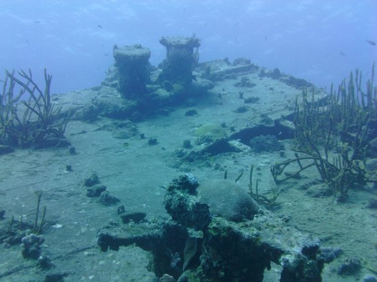 St. Thomas Diving Club: wreck of the Cartanza