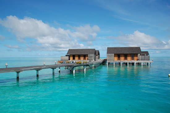 Gangehi Island Resort: water bungalows Gangehi