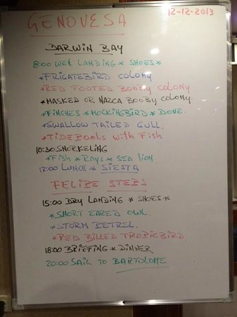Galapagos Experience : A typical days schedule.