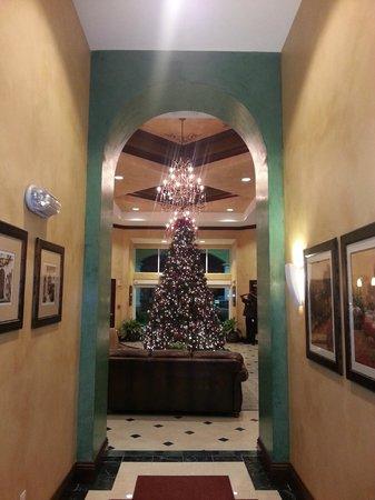 The Point Orlando Resort : lobby christmas tree