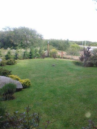Patagonia Queen: Vista desde el desayunador! Con una bandurria al fondo!!