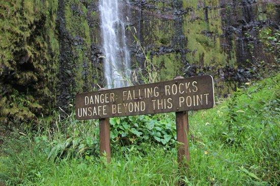 Pipiwai Trail : Водопад