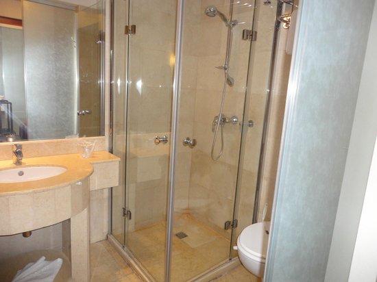 Hotel Marshal: Shower