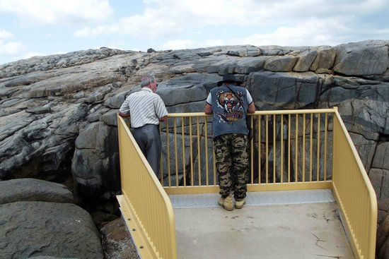 The Gap and Natural Bridge : The Gap