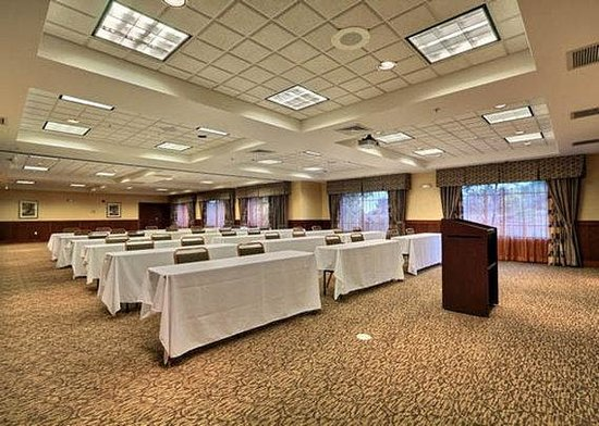 Comfort Suites Grand Rapids North: Meeting Space