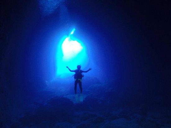 The Grotto: 素敵でしたぁ*\(^o^)/*