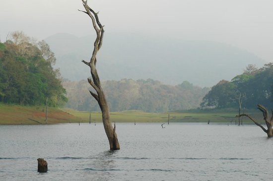 KTDC Periyar House : On the lake