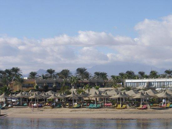 Dessole Aladdin Beach Resort: Strand vanuit de boot