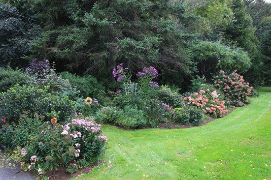Air-Line Motor Inn: Garden near rooms