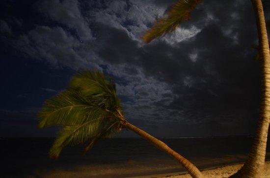 Vista Sol Punta Cana: Night on the beach
