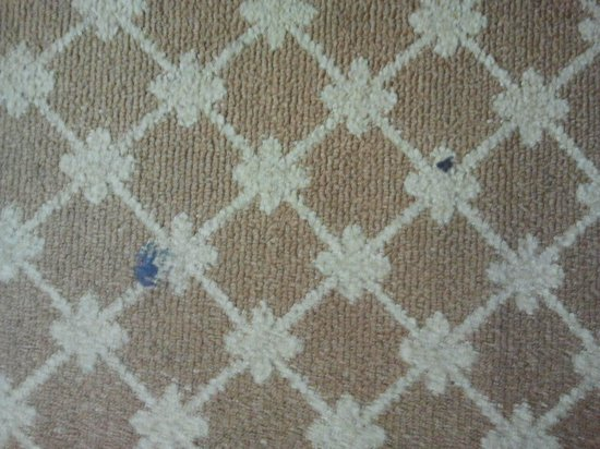 Country Inn & Suites by Radisson, Savannah Airport, GA : Stubborn dirty strain on the carpet upon arrival