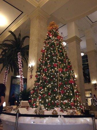 Tampa Marriott Waterside Hotel & Marina: Beautiful Christmas Tree in the lobby.