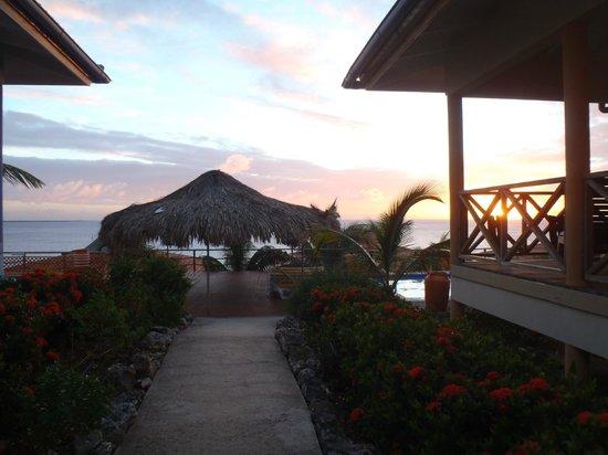 Caribbean Club Bonaire : View toward pool between villas