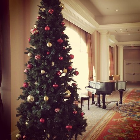 Tampa Marriott Waterside Hotel & Marina : Lovely area on 2nd floor with Christmas tree and Piano