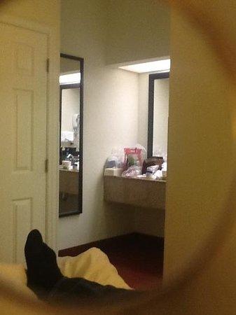 Hampton Inn Walterboro: sink outside of bathroom