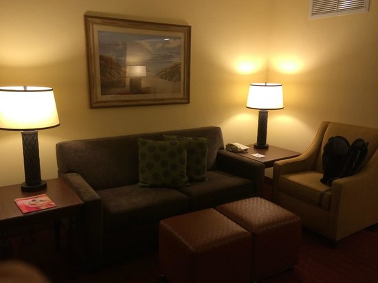 Embassy Suites by Hilton Orlando - North: Living room area