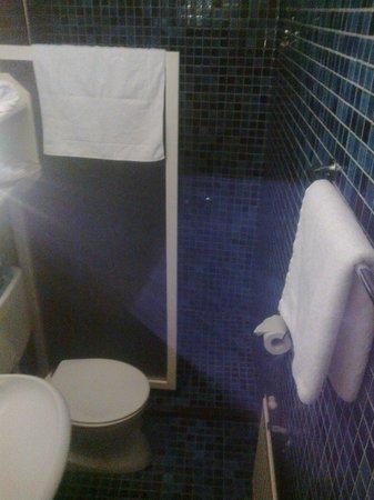 Hotel Stad Munster: bathroom