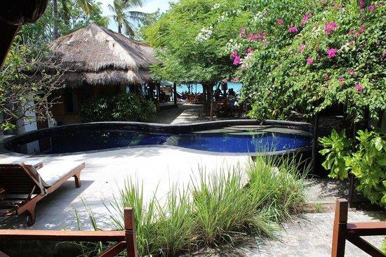 Manta Dive Gili Air Resort: Swimming pool