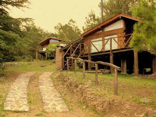 Cabañas Los Arboles: Cabañas desde afuera