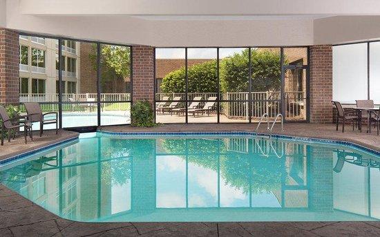 Sheraton Ann Arbor Hotel: Indoor Pool