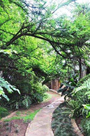 Aero Guest Lodge: Beautiful nature!