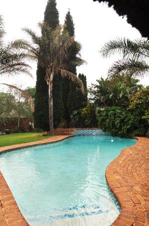 Aero Guest Lodge : Pool area.