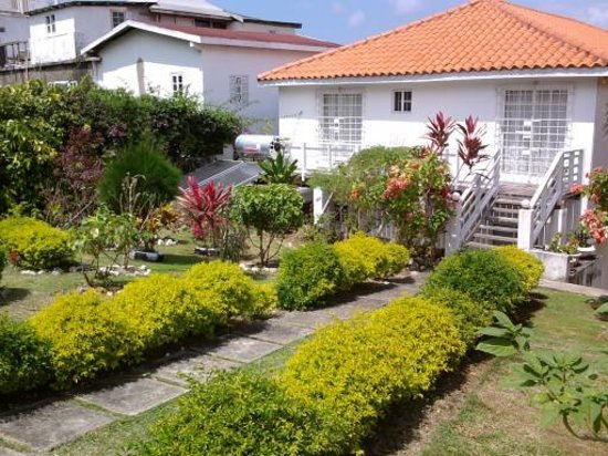 Villa Cocotero : nice pic