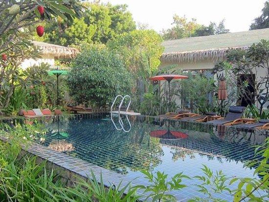 Blue Bird Hotel: Pool area