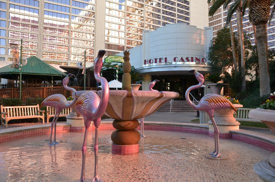 Picture of flamingo casino tropical suites casino and spa punta cana