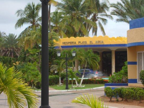 Hesperia Playa El Agua : Muy buena limpieza
