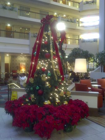 Embassy Suites by Hilton Atlanta - Perimeter Center : Christmas at Embassy Suites!