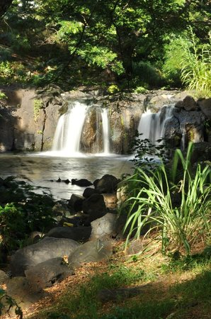 Oahu Photography Tours : Waterfall in park