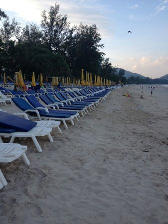 Patong Beach: Loved the rows of umbrellas