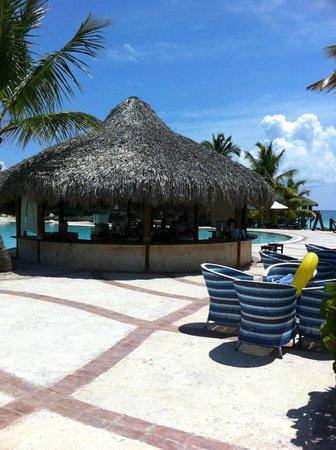 Sanctuary Cap Cana by Playa Hotels & Resorts: Pool Bar