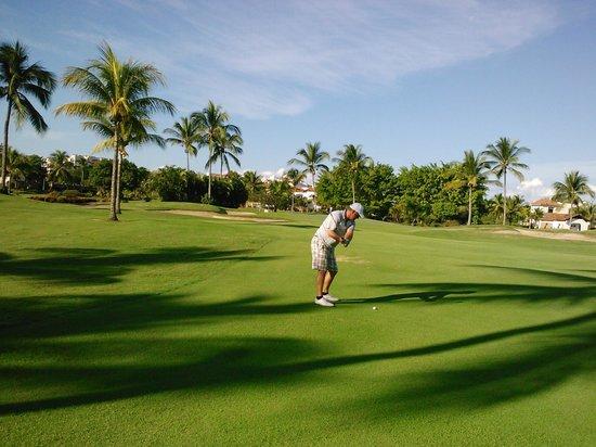 Now Amber Puerto Vallarta: marina vallarta golf...