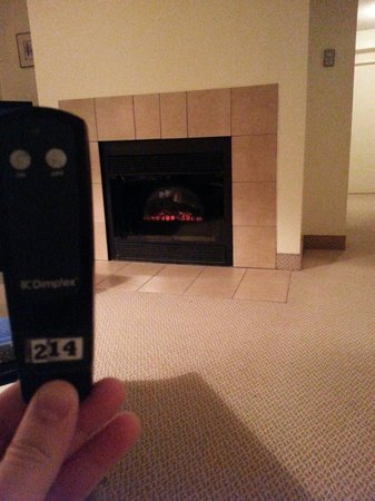 Owl's Head : Non heating electric fireplace. Room 214