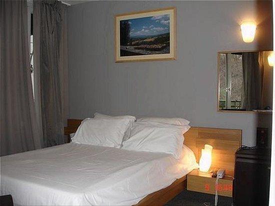 Hotel du Parc Saint Charles: Double Room
