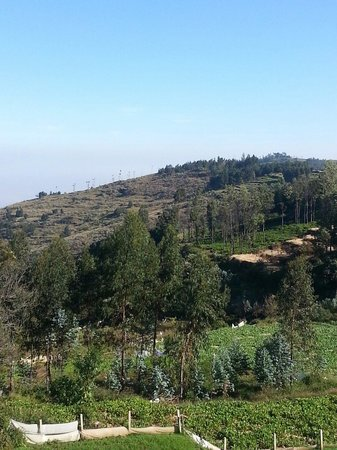 Mount 'n' Mist: The expanse of the valley as seen from the resort