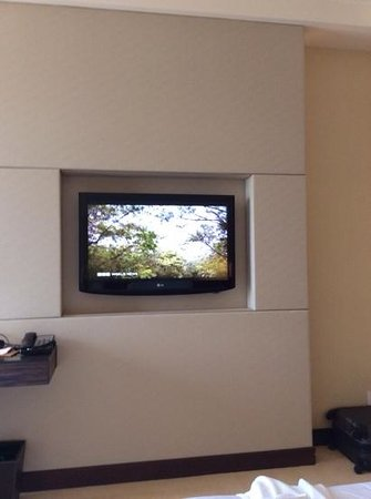 Sheraton Nha Trang Hotel and Spa: TV wall