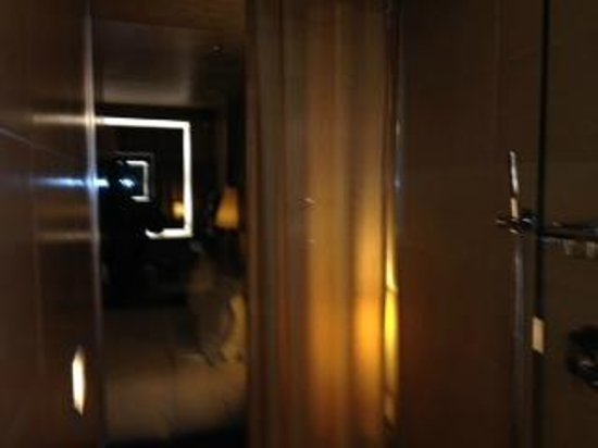 dana hotel and spa: Shower window