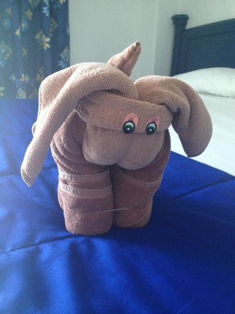 Hotel Riu Caribe : Cute little towel animals daily