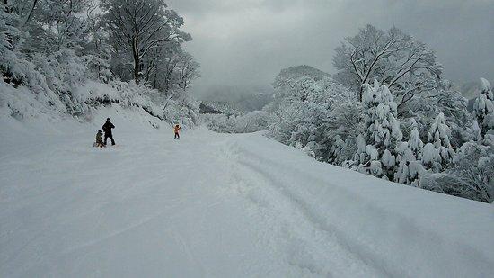 Asahi Tengusuton Snow Park