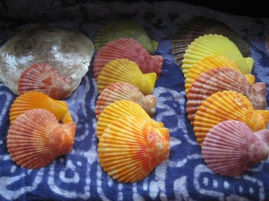 Xom Chai Resort: colorful shells