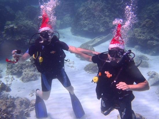 Infinity Ocean Diving - Private Diving: Les pèrs noel des fonds marin