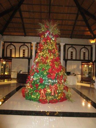 Meliá Caribe Tropical: Hotel