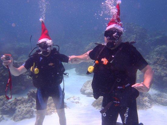 Infinity Ocean Diving - Private Diving: Nos cadeaux sous les eaux