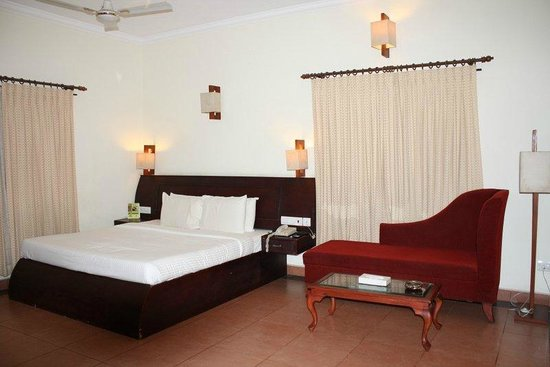 The World Backwaters: The room
