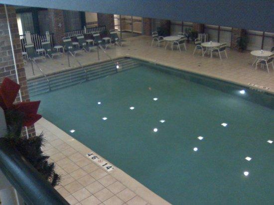 Holiday Inn Fond Du Lac: Pool